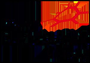 logo-fnw