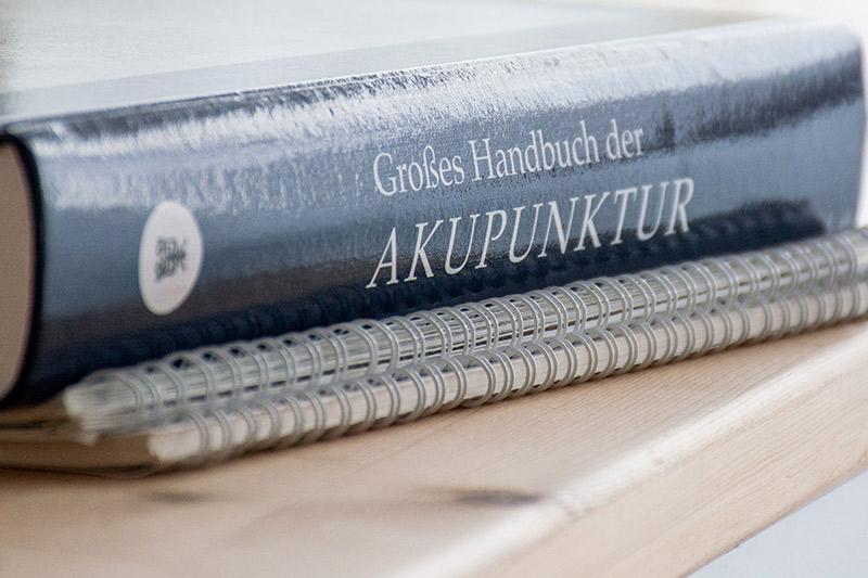 Grosses Handbuch der Akupunktur - FrauenWelt